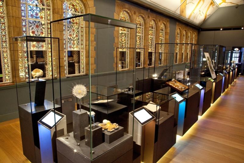 Perfektion in Glas: Zu den Kunden zählt auch das Natural History Museum in London.
