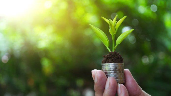 Private Debt: Die alternative Finanzierungslösung