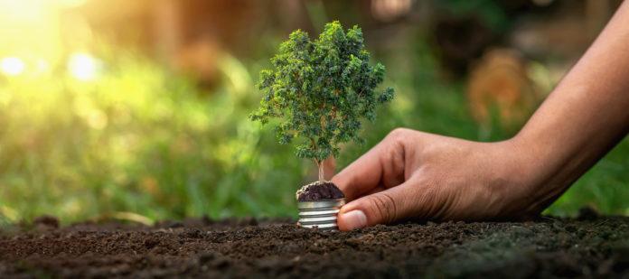 Beteiligungsgesellschaften wie die Deutsche Private Equity können dem Unternehmen zu neuem Wachstum und zu völlig neuen Perspektiven verhelfen.