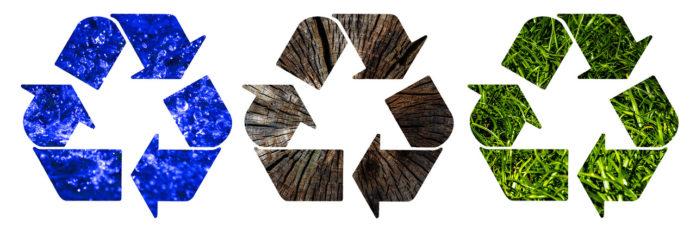 Das Thema Nachhaltigkeit mit CO2-Footprint, Recycling und nachwachsenden Rohstoffen gehört auf die Management-Agenda von Unternehmerinnen und Unternehmern.