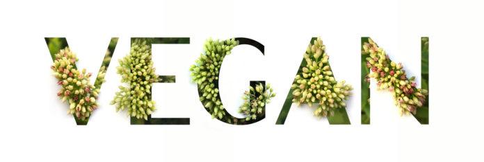 Die Brandenburg Kapital, GmbH, führende Venture-Capital-Gesellschaft der Region Brandenburg, steigt bei der veganen Foodmarke Veganz Group AG ein.